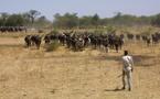 """Tchad : """"Il est hors de question que notre pays soit dirigé par des aventuriers semi-dictateurs"""" G.N"""