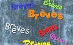 Tchad : Brèves du jour (Recensement, Paix, Sécurité, Santé, Politique, Presse...)