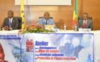 Télécommunications : Vers l'élaboration d'une stratégie congolaise portant protection de l'enfant en ligne