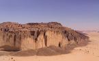 Tchad : Une nouvelle taxe pour la protection de l'environnement
