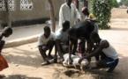 N'djamena : Fête du mouton dans la fièvre des préparatifs de la Tabaski