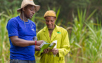 Développement des petits exploitants agricoles africains : les progrès sont lents