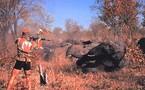 Tchad : Le gouvernement en lutte contre les braconniers