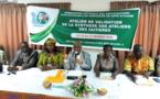 Côte d'Ivoire/Redynamisation des activités des professions agricoles : Un forum et une table-ronde annoncés