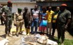 Cameroun: Quatre trafiquants arrêtés à Santchou