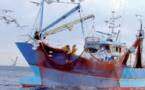 Le nouvel accord de pêche Maroc-Union Européenne intègre bien le Sahara marocain