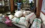Cameroun  : six trafiquants d'écailles de pangolins arrêtés à Douala