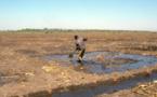 Tchad : un projet de réinsertion économique des groupes vulnérables dans le bassin du Lac