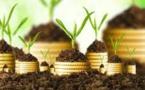 Les institutions financières unissent leurs forces pour mobiliser des investissements en Afrique