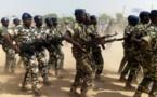 Tchad : les militaires à l'honneur pour la fête des armées