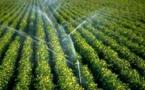 Le Tchad s'engage à créer des solutions d'irrigation performantes