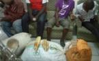 Douala :  Quatre trafiquants fauniques aux arrêts