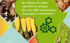 Un salon africain de l'agriculture au Tchad pour stimuler les politiques nationales