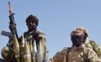Tchad : une attaque de Boko Haram fait deux morts et deux blessés