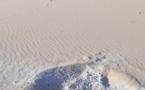 Tchad : des milliers d'orpailleurs contraints de quitter Kouri-Bougoudi