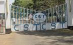 Tchad : la fraude asphyxie la production de la compagnie sucrière