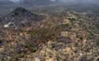 Nigeria : frappes aériennes de l'armée sur la forêt de Sambisa, repère de Boko Haram