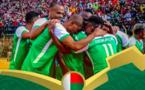 CAN 2019 - Les experts n'attendent pas d'exploit pour nos Malgaches