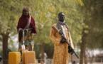 """Le changement climatique pousse les agriculteurs vers le """"tournant"""" de la crise du lac Tchad"""