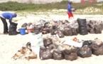 Préservation de l'environnement : Congo Terminal dit non aux plastiques