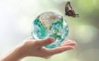La paix à l'aune du monde