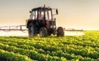 Vers la mise en place d'un fonds de garantie pour soutenir les agriculteurs togolais
