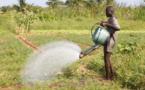 Togo : 73 millions FCFA de la FAO à 3 ONG pour lutter contre la faim et l'insécurité alimentaire