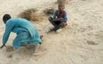 Tchad : libération d'un maître coranique qui attachait des enfants avec des chaînes