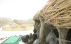 Lac Tchad : le CICR sensibilise les pays sur le droit international humanitaire