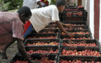 Madagascar : Transformer le pays en plateforme commerciale régionale avec la BAD