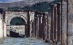 Les États-Unis et l'Algérie luttent contre le trafic de biens culturels