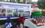 """Tchad : le secteur informel est """"constitué à plus de 90% par les femmes"""""""