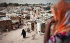 L'Etat : une greffe occidentale sur un corps djiboutien