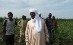 Le Groupe WADI KOUNDI participe au développement socio-économique du Tchad
