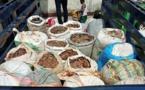 Cameroun/Douala : Des trafiquants fauniques au tribunal