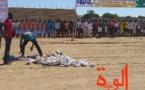 Tchad : lancement des travaux de réhabilitation de la pelouse du stade d'Abéché
