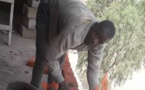 Tchad : les jeunes diplômés affrontent le chômage avec la débrouillardise