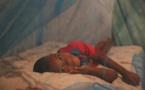 Deux milliards de moustiquaires distribuées dans le monde depuis 2004