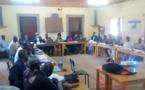 Tchad : produits forestiers non ligneux, une importance vitale au Mayo Kebbi Ouest
