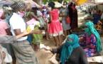 Tchad - Covid 19 : Au marché de Dembé, des centaines de cache-nez offerts par la LIFPLT