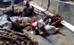 Tchad : à N'Djamena, le prix des volailles de plus en plus cher pour les consommateurs