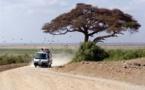 L'Afrique de l'Est demeure la région la plus dynamique du continent malgré le Covid-19