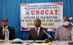 Tchad : un programme d'action pour développer le secteur des arts et la culture