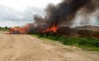 Tchad : trafics illicites de drogues et substances prohibées, les autorités mettent en garde