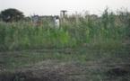 Tchad - Immobilier: Occasion en or à ne pas rater