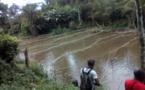 Cameroun /Evénement : Endinding fête le poisson et le vin de palme