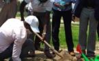 Tchad : planter des arbres pour protéger l'environnement, un autre défi de l'heure