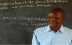 Tchad : une coopérative veut révolutionner la culture du manioc pour améliorer les conditions de vie