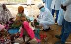 Tchad : plus de 15.000 cas de Chikungunya enregistrés à l'Est