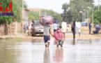 Tchad : à N'Djamena, la tristesse des populations touchées par la crue du fleuve Chari